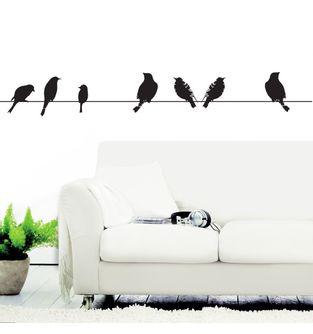 miso-birds