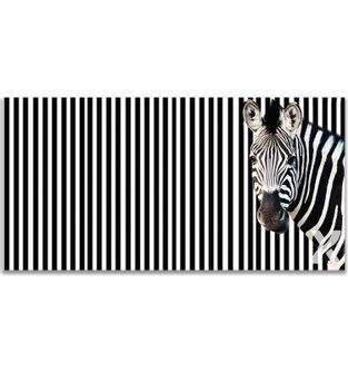 Cuadro-Stripe-Zebra